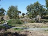 Horsham / Wimmera River on west wide of weir and at wetlands / View south across wetlands towards river