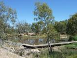 Horsham / Wimmera River on west wide of weir and at wetlands / View west along river at wetlands