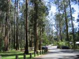 Kallista / Grants Picnic Ground, Monbulk Road / BBQ areas and car park