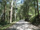 Kallista / Kallista-Emerald Road near eastern end / View along road through bush near Menzies Creek