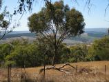 Kilmore / Monument Hill and Hume & Hovell Memorial Lookout Tower / View east from near base of lookout tower