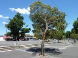 Lilydale / Shops and commercial centre, Main Street / Westerly view through square on west side of Olinda Creek