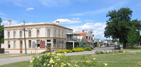 Mansfield Information Travel Victoria Accommodation