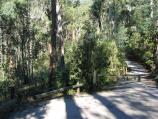 Marysville / (before the fires) Steavenson Falls, Falls Road / Walking track to falls from car park