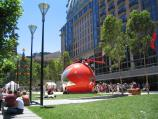 Melbourne / City Square, Swanston Street / Lawns with Christmas decorations