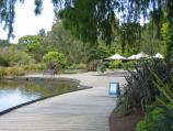 Melbourne / Royal Botanic Gardens / Boardwalk at the Gardens Shop and Ornamental Lake