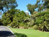 Melbourne / Royal Botanic Gardens / Path near eastern side of Nymphaea Lily Lake