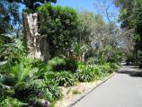 Moonee Ponds / Queens Park / Pathway through gardens near north-west corner of lake