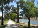 Moonee Ponds / West bank of Maribyrnong River, north of Maribyrnong Road / View north along river along pathway beside Chifley Dr