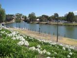 Moonee Ponds / Parkland along east bank of Maribyrnong River, north of Maribyrnong Road / View south-west along river from Boathouse Cafe