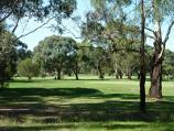 Morwell / Morwell Golf Club, Fairway Drive / Green and surrounding bush fronting Fairway Dr