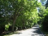 Mount Macedon / Mount Macedon Road / View south along Mt Macedon Rd, south of Sangsters Rd