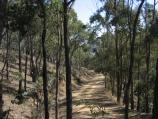 Myrtleford / Reform Hill lookout, Scenic Drive / Access road to Reform Hill lookout