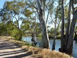 Natimuk / Wimmera River on northern side of Wimmera Highway, east of Natimuk / View south along river towards Wimmera Hwy bridge