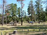 Natimuk / Centenary Park camping and picnic area, Centenary Park Road / Camping area