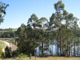 Neerim South / Tarago Reservoir Park / View down towards dam wall from picnic area