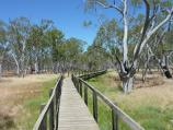 Nhill / Nhill Swamp Boardwalk between Jaypex Park and Lake Nhill / View along boardwalk