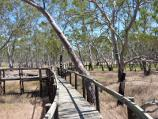 Nhill / Nhill Swamp Boardwalk between Jaypex Park and Lake Nhill / Boardwalk junction at section to bird hide