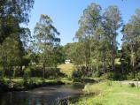 Noojee / Parkland along La Trobe River, east side of Bennett Street / View east along river near BBQ shelter