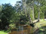 Noojee / Parkland along La Trobe River, McCarthy Spur Road / View west along La Trobe River from bridge at Loch Valley Rd