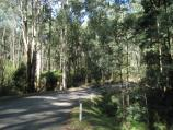 Noojee / Loch Valley Road / Loch Valley Rd through bush area