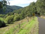 Noojee / Toorongo Falls Road / View along Toorongo Falls Rd near Mt Baw Baw Rd