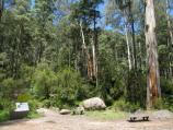 Noojee / Toorongo Falls Reserve / Start of walking track to Toorongo Falls and Amphitheatre Falls