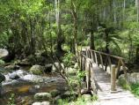 Noojee / Toorongo Falls Reserve / Bridge over Toorongo River