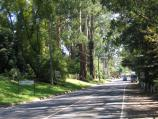 Olinda / Around Olinda / View north-west along Mt Dandenong Tourist Rd at Everest Cr
