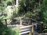 Olinda / Olinda Falls, Falls Road / Viewing platform at falls
