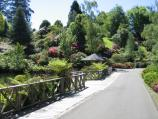Olinda / National Rhododendron Gardens / Path along side of lake
