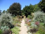 Olinda / Cloudehill Gardens, Monbulk Road / Pathway through gardens