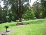 Olinda / Valley Picnic Ground, Boundary Road / BBQ and picnic areas