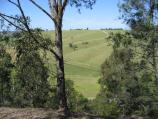 Orbost / Grandview Lookout, Newmerella / View south