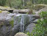 Orbost / Murrungower Forest Drive / Little Cabbage Tree Creek Falls
