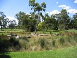 Parkville / Royal Park - Australian Native Garden, Gatehouse Street at The Avenue / Lake