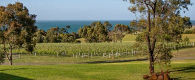 Terindah Estate, Bellarine