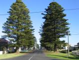 Port Fairy / Around Port Fairy / View south along Sackville St at Regent St
