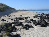 Port Fairy / Griffiths Island / Path along beach towards lighthouse