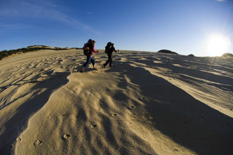 Croajingolong National Park - Sand dunes