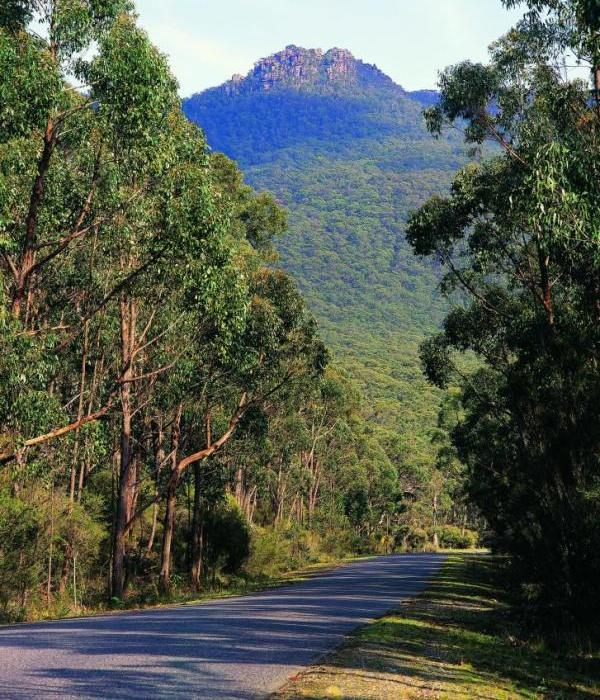 Grampians National Park - Road through the national park