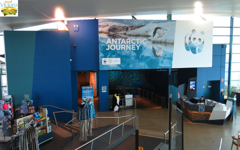 The Nobbies - Entrance to Antarctic Journey inside The Nobbies Centre