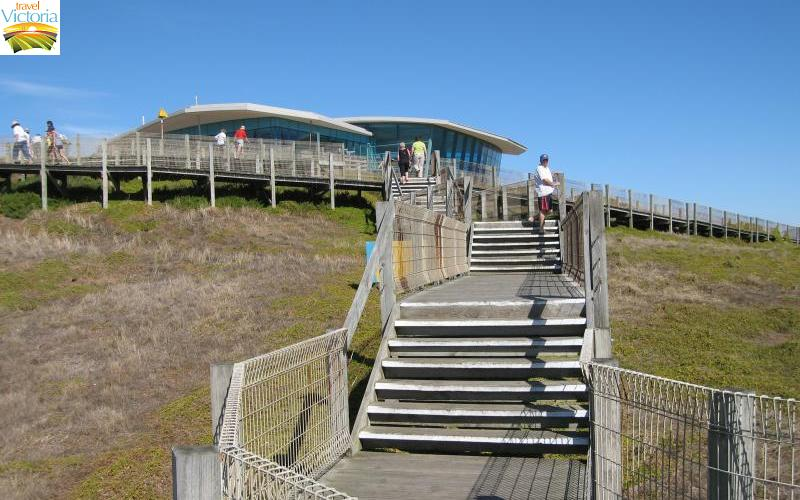 The Nobbies - Boardwalk and stairs leading up to The Nobbies Centre