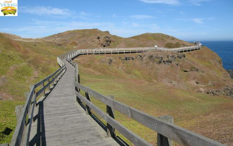 The Nobbies - Boardwalk to eastern lookout