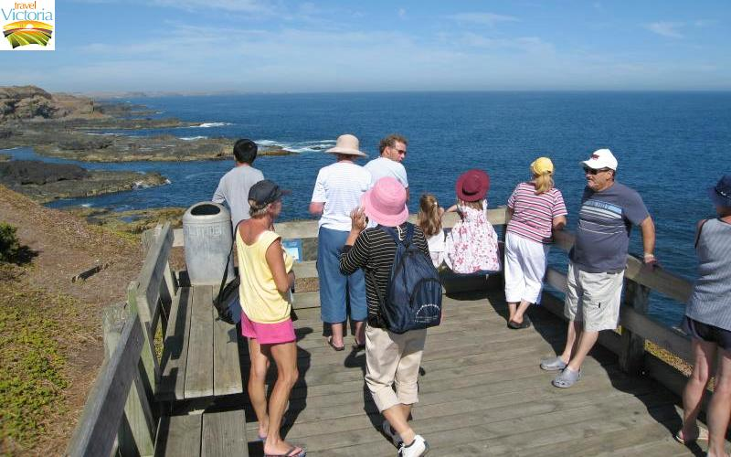 The Nobbies - Viewing platform at eastern lookout