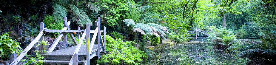 The Dandenongs photos
