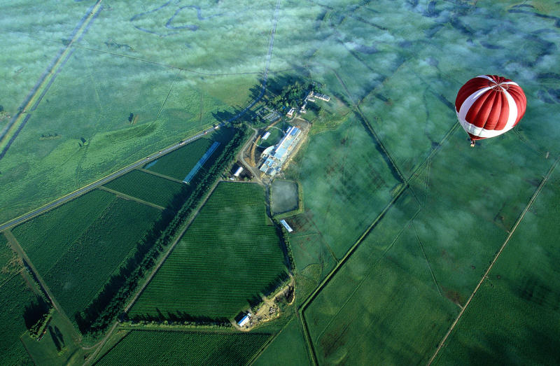 Yarra Valley - Aerial view of Yering Station (photo by Global Ballooning)
