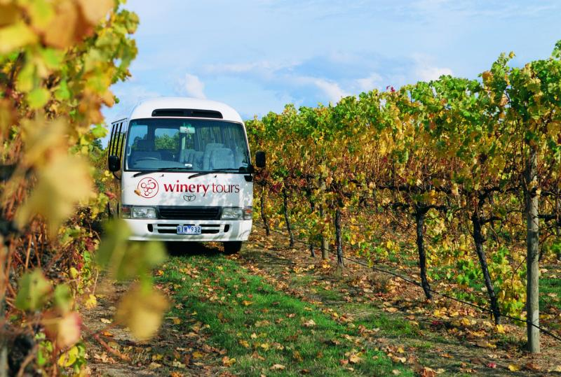 Yarra Valley - Winery tours