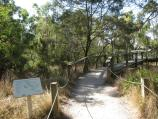Rhyll / Koala Conservation Centre, Phillip Island Road / Entrance to Woodland Boardwalk
