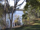 Robinvale / Weir and Lock 15, Murray River / View along Murray River from picnic area at car park